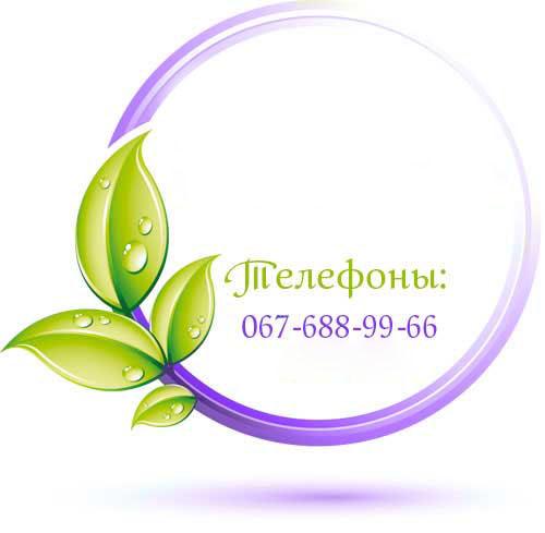Услуги салона красоты Киев